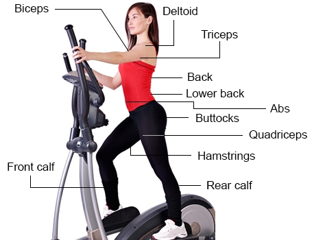 An effective elliptical HIIT workout can have many benefits, including hitting a large set of muscles.