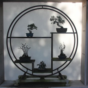 Bonsai Mister profile image
