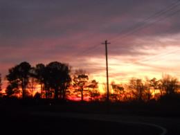 FL sky line