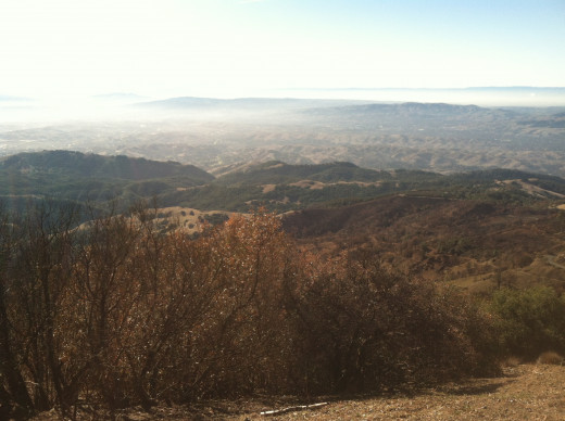 Mt. Diablo burn zone looking outward into the smog.