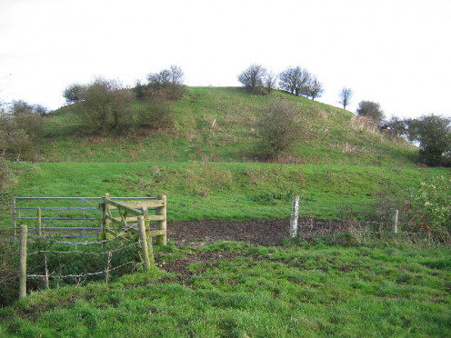 After William de Forz was excommunicated in 1221, Skipsea Castle was razed and only the motte remains.