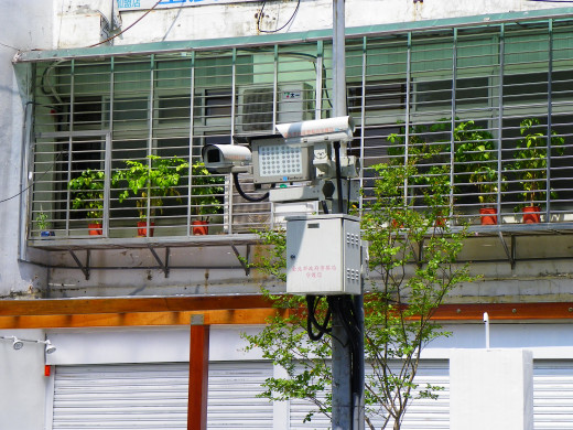Video surveillance is so commonplace that it blends in with all types of environments.