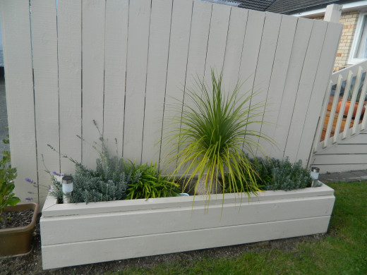 This area came about as a privacy screen how ever with the planter here you can have an interesting garden. Planted out With lavender and ponytail palm.