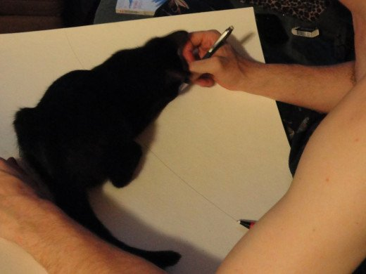 my cat, rest her little soul, always ready to try to eat my pencil or swat my paper while I try and work through a problem