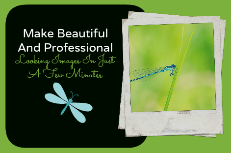 Make fantastic images on Picmonkey in minutes, with little training, no downloads and no fees!