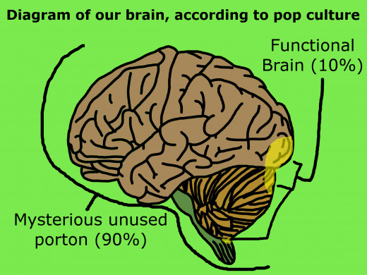 Bonus points: label the brain part in charge of ESP.