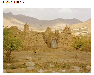 What is left after Fazi left the Shomali area