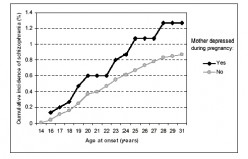 Schizophrenia in offspring of mothers depressed after birth, Northern Finland 1966. Schizophremics showed more symtptoms when their mothers had been depressed.
