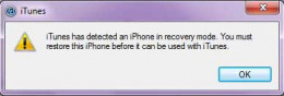 iPhone in recovery mode detected