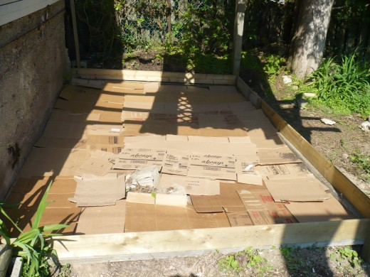 Cover the entire bottom of the garden with cardboard.