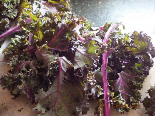 Lovely kale!