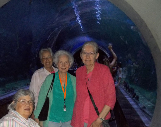 Me, Anita, Mary and Leeann at the entrance to the shark tunnel