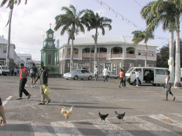 Section of Basseterre, the capital.  Photo by Clark Anderson/Aquaimages