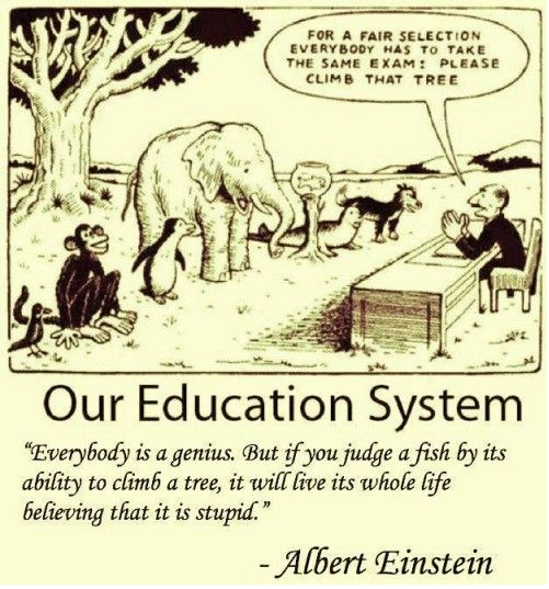 Einstein's view of education