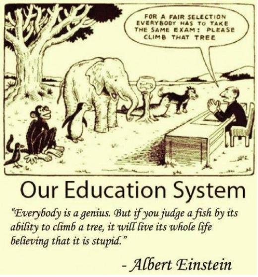 Einstein's view of education