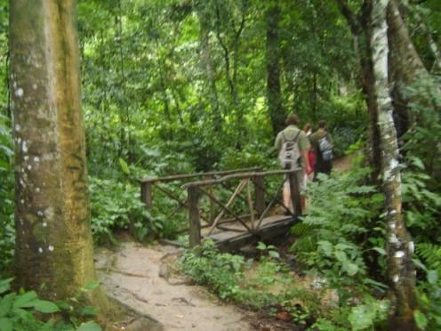 Trekking through the jungle to waterfalls