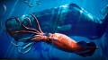 Creatures of the Deep Ocean