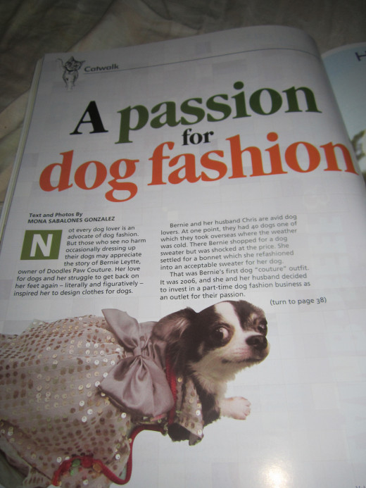 First page of my article on responsible dog fashion. The photo shows a chihuahua wearing a fabulous gown. Just one of Bernie Alfonso Leytte's dog clothes designs.