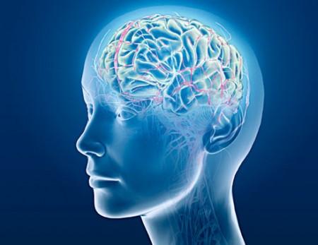 Brainwaves made simple