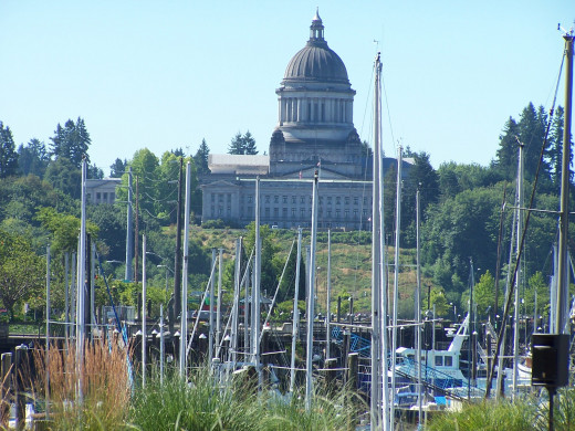 Set in Olympia, Washington