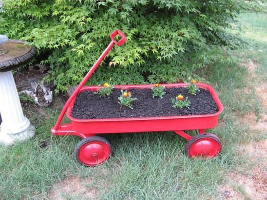 Here's a new school planting wagon!