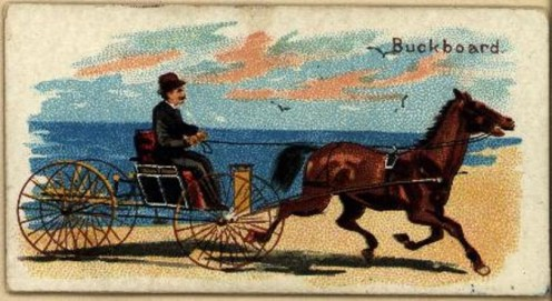 Man driving a buckboard