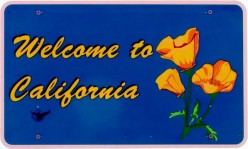 Top 25 Fastest-Growing Jobs in California