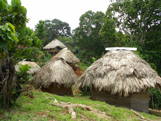 A shot upon arrival of the Embera Indian Village, all thatched in their tradition.