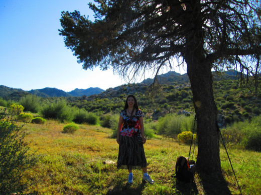 Standing under the tree with a view of the Pinnacles.