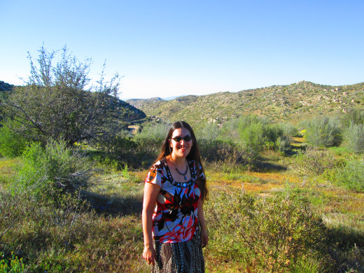 Another view of Highway 173 behind me, which is the dirt highway that is now closed.