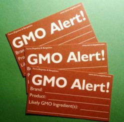 "GMO-""Global Alert"". Super weeds & Super worms taking over our crops"