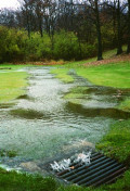 Low Impact Development (LID) in Landscape Design