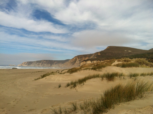 A beach at Point Reyes National seashore.