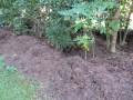 Mulching Your Garden - Gardening Mulch