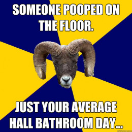 """Meme that reads: """"Someone pooped on the floor. Just your average hall bathroom day."""""""
