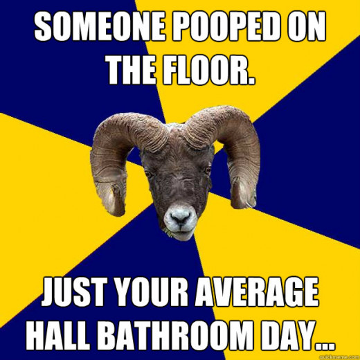 "Meme that reads: ""Someone pooped on the floor. Just your average hall bathroom day."""