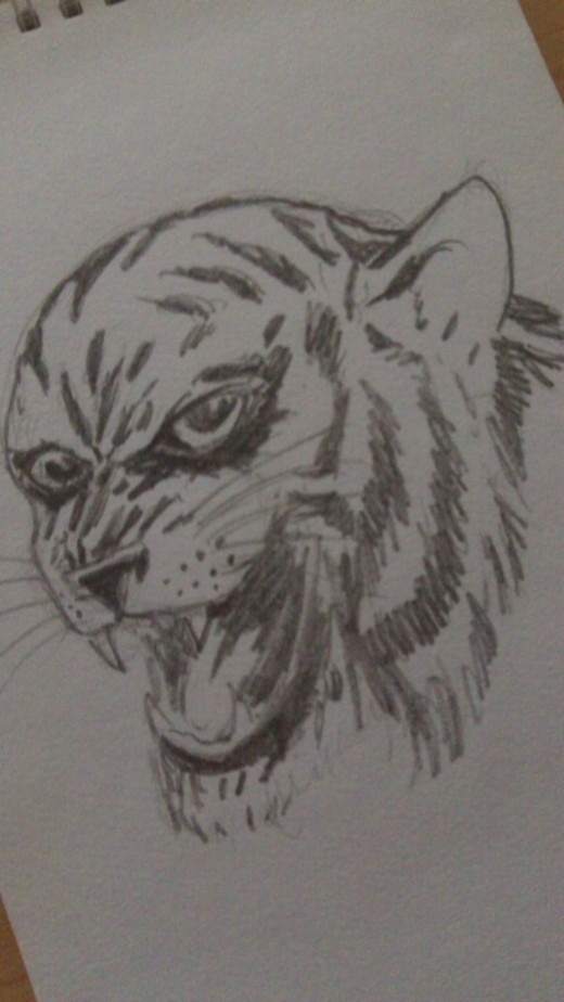 Trying to draw a Tiger head which ended up looking more like a Thundercat.