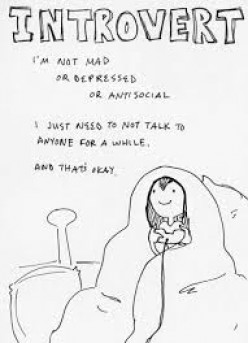 A Guide to Understanding Asocial Introverts