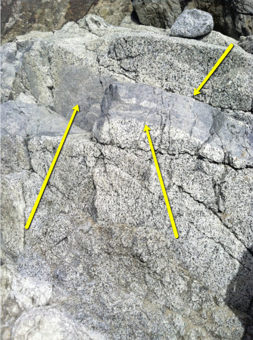 Volcanic intrusion. The speckled rock is granite. The gray solid strip is likely basalt. The granite is a hardened piece of a volcanic chamber. The basalt is extruded lava that came later. It worked in through cracks and formed a Sill.