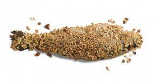 oat-crusted trout
