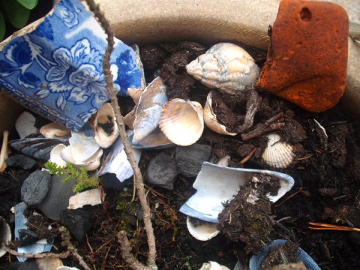 Use the treasure found on your nature walk to create a fantastic short story.