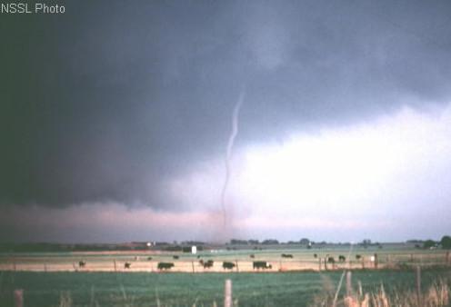 Oklahoma tornado (public domain)