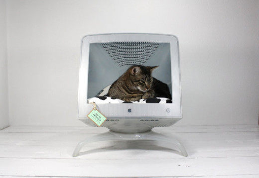 Up-Cycled cat bed