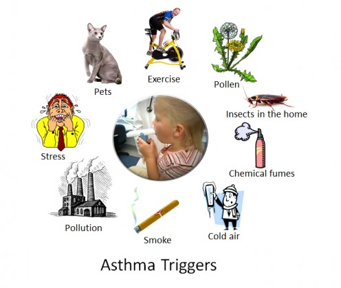 How To Manage Your Asthma By Implementing Effective Asthma. Microsoft Internet Filter Bug Tracking System. Open Source Security Information Management. Forensic Science Schools In Florida. House Cleaning Chicago Il Master In Logistics. Best Universities In Tennessee. Global Business Network Llc Us History Class. Online Help Desk Ticketing System. How To Lose Weight On A Liquid Diet
