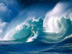 Sentient Ocean