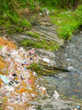 How Garbage Affects Our Waterways