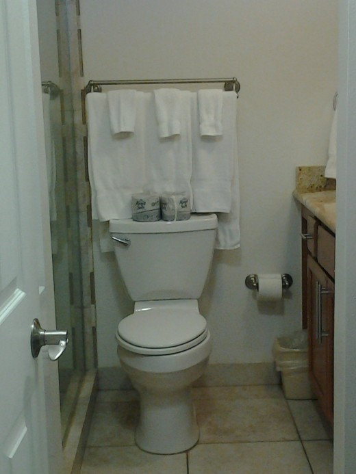 Clean Bathroom in Outriggers Resort, West Maui