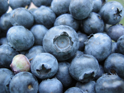 Blueberries in moderation people!