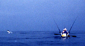Jim Sammons fighting first marlin caught on SOT kayak. 1998 photo from Sammons' site www.kayak4fish.com