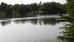 Mills Pond Austin TX